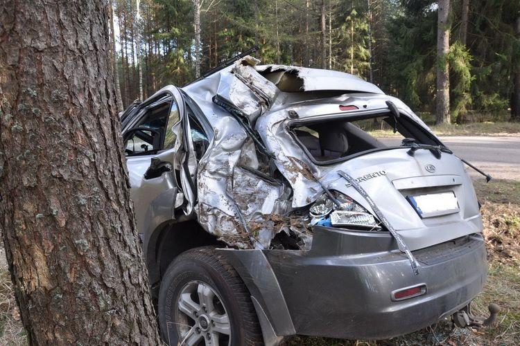 Kierujący Kia Sorento uderzył w drzewo